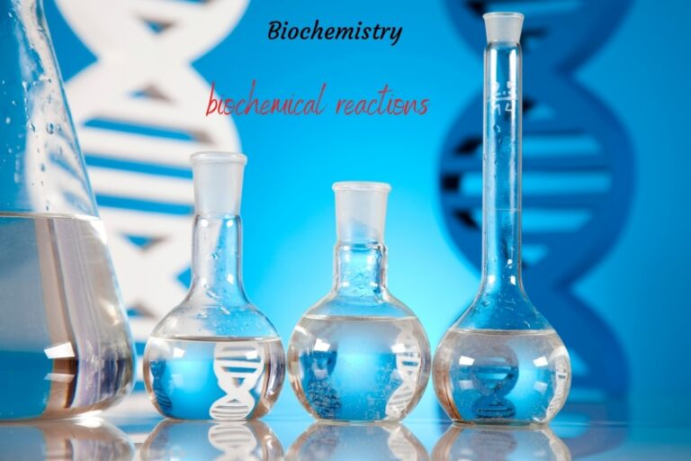 Definitions of Common Biochemical Terms