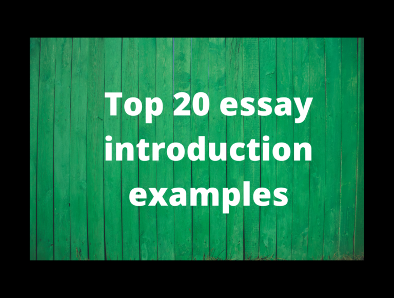 Top 20 Essay Introduction Examples
