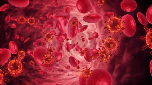 Nursing Diagnosis & Care Plan for Anemia- A Student's Guide