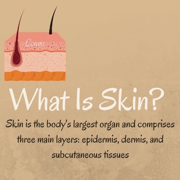 Nursing Diagnosis & Interventions for Impaired Skin Integrity- Student Guide